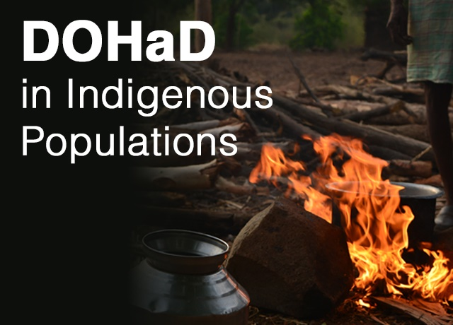 DOHaD in Indigenous Populations